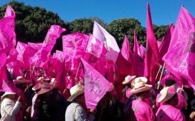 Femmes rurales en mouvement (Mulheres rurais em movimento)