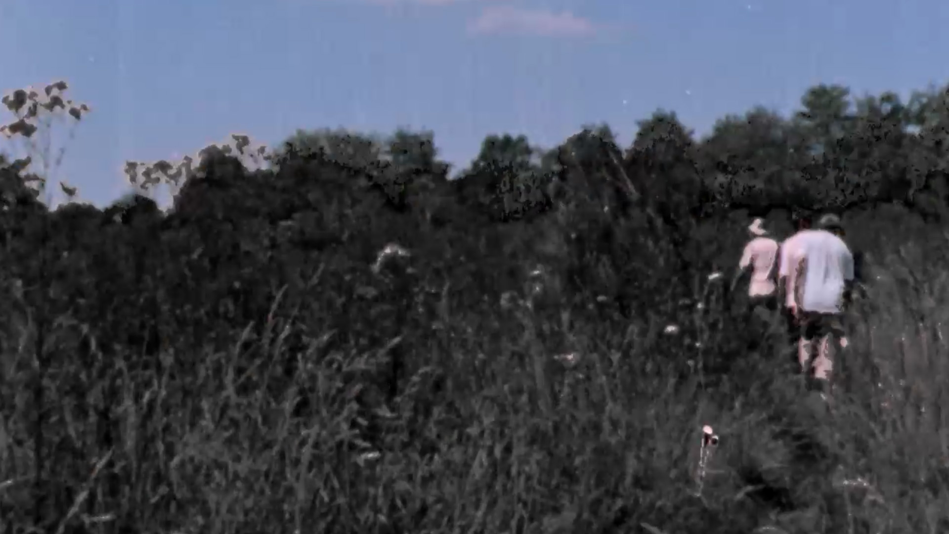 Festival Résistances 2021 Foix Cinéma Militant J**** Liberticide